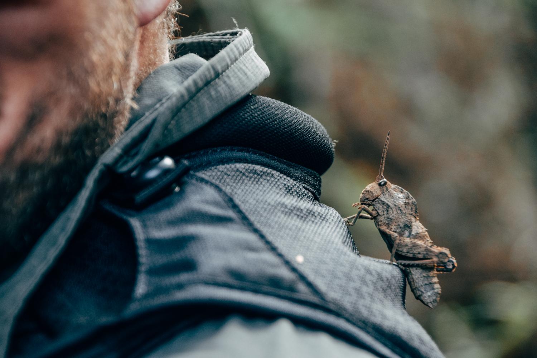 Een sprinkhaan op de rug van de fotograaf in Zuid-Afrika.