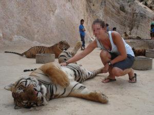 Een foto met een tijger in de tijgertempel in Thailand.